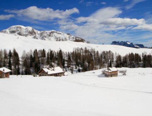 La ski area di Falcade