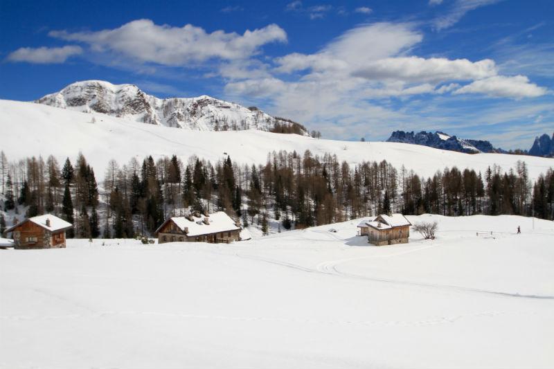 ski area di falcade